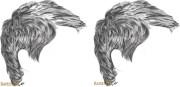 draw short hair detailed