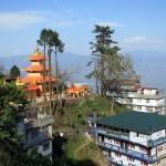 Darjeeling, Tea and Traffic