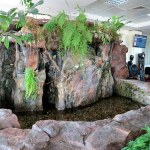 Uganda Entebbe Airport Lounge Has Faux Mountain and Goldfish Pond