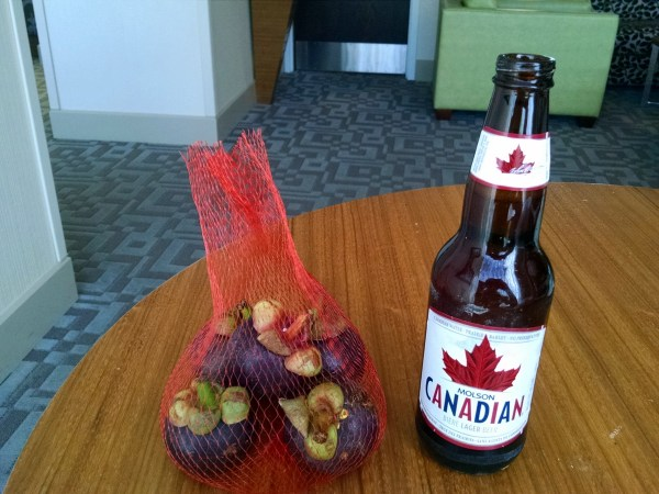 mangosteen-and-molson