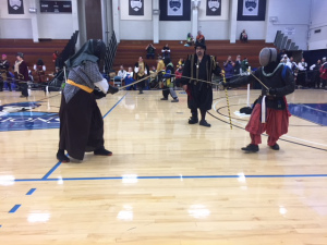 Fencers in the list at Rapier Champions 2017