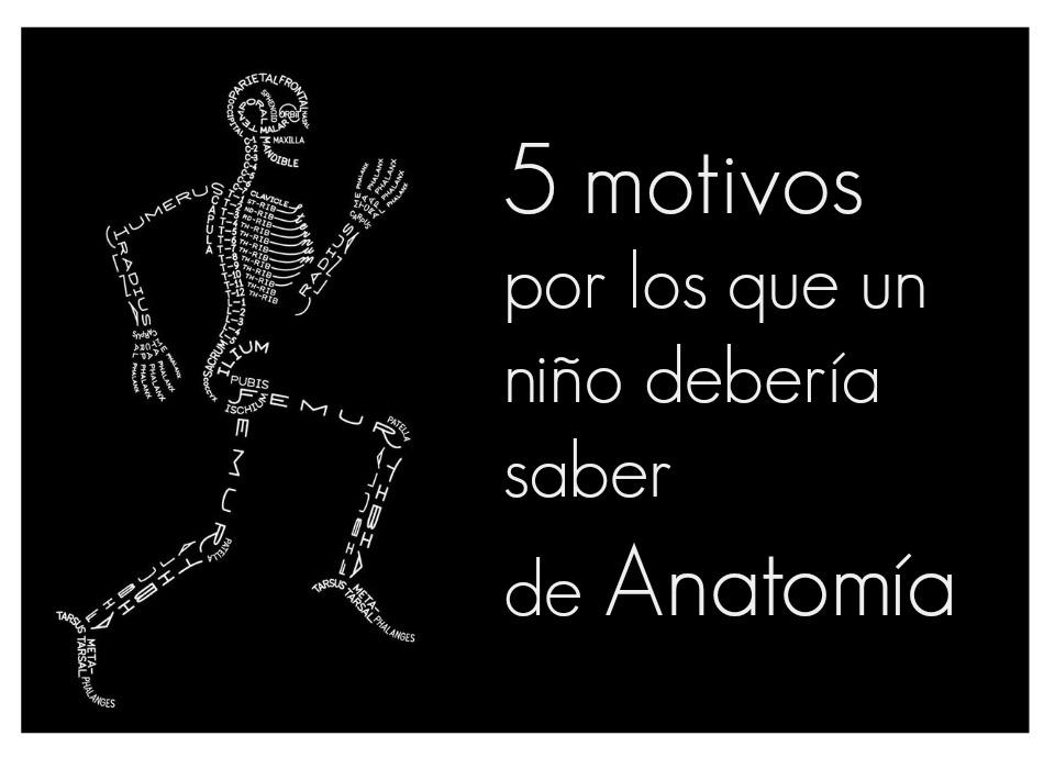 5 motivos por los que un niño debería saber de Anatomía