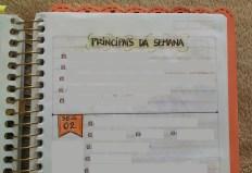 19-semanas-bullet-journal-raquel-yopan-1