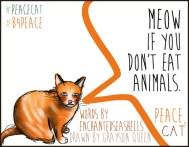 #peacecat, PeaceCat, Bloggers4Peace, B4Peace, Grayson Queen, Rarasaur, Enchanted Seashells
