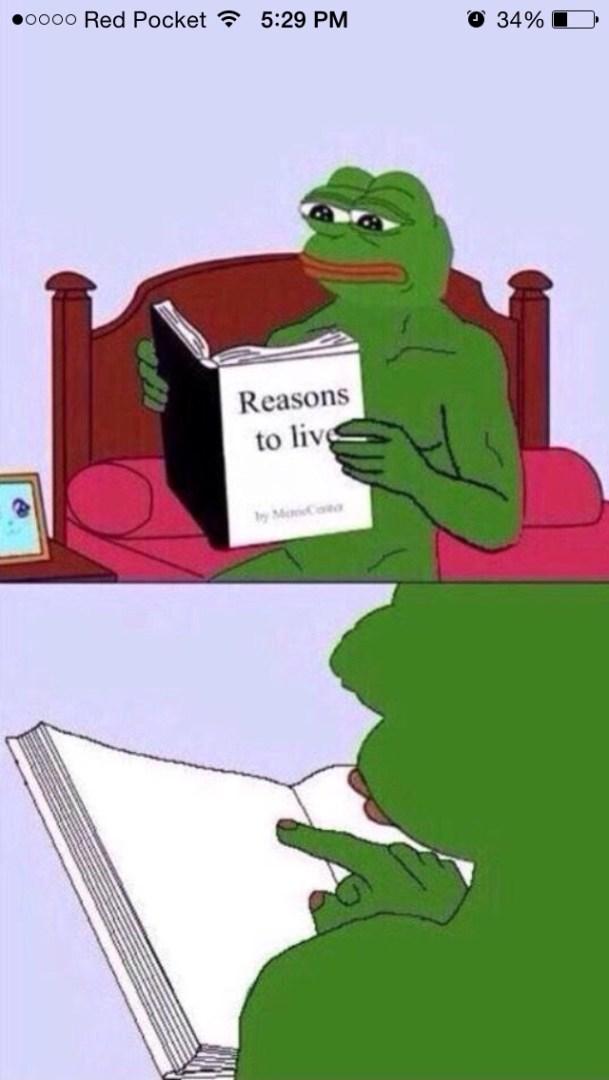 Reasons to Live Pepe