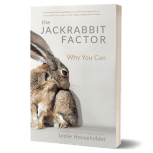 Book: Jackrabbit Factor Paperback
