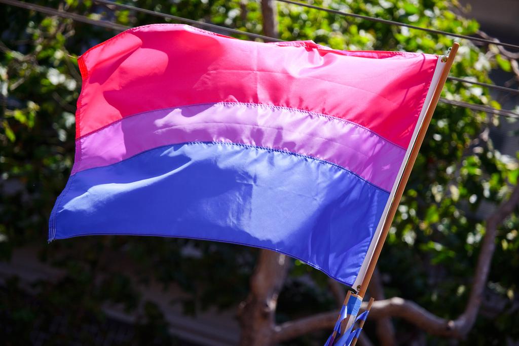 Image of bisexual pride flag by Peter Salanki.