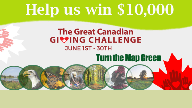 Help us win $10,000, The Great Canadian GIVING CHALLENGE, June 1st-30th, Turn the Map Green