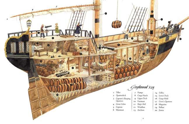 PirateDiary – ship diagram   Rarest Kind of Best