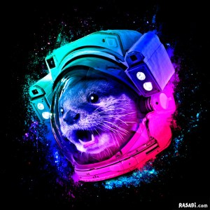 t-shirt otter space rainbow