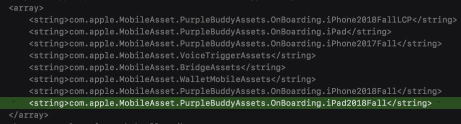 iPadFall2018の記述がコードから発見される