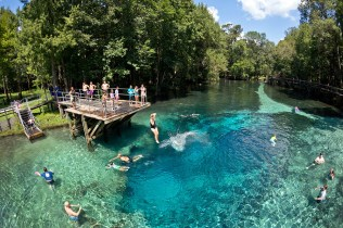 Florida Blue-Springs