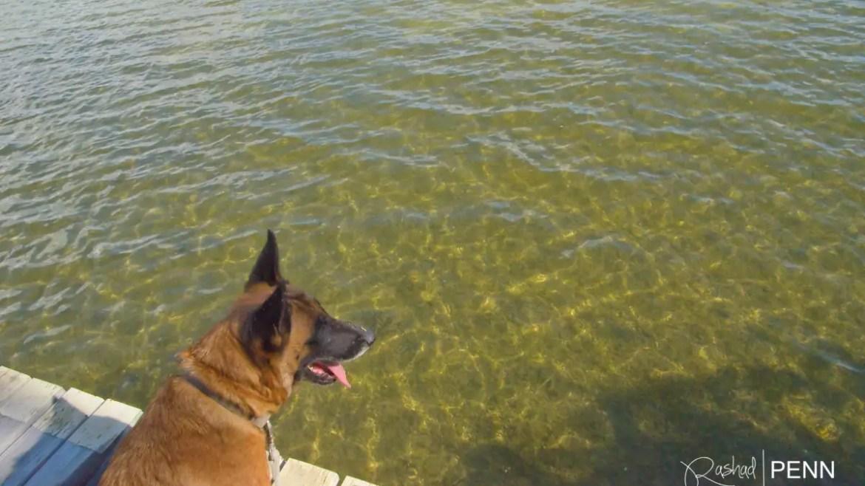 Visit Lake Nancy