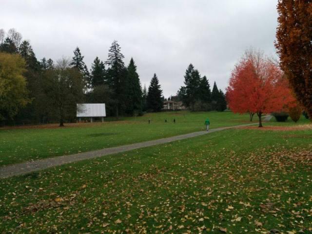 Fall in Seattle!
