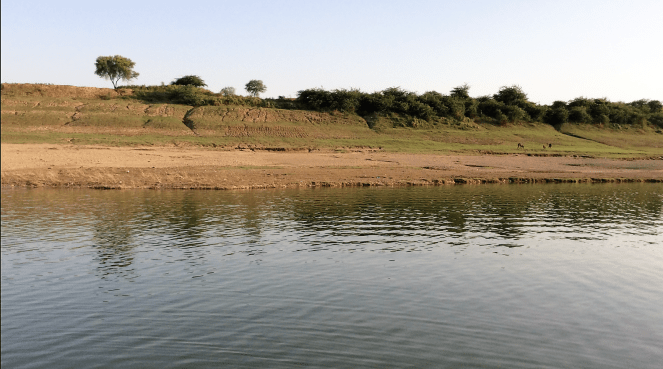 A view of the Chambal river sanctuary