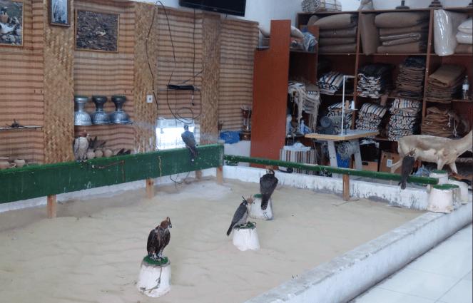 Falcon souq adjacent to Souq Waqif, Doha