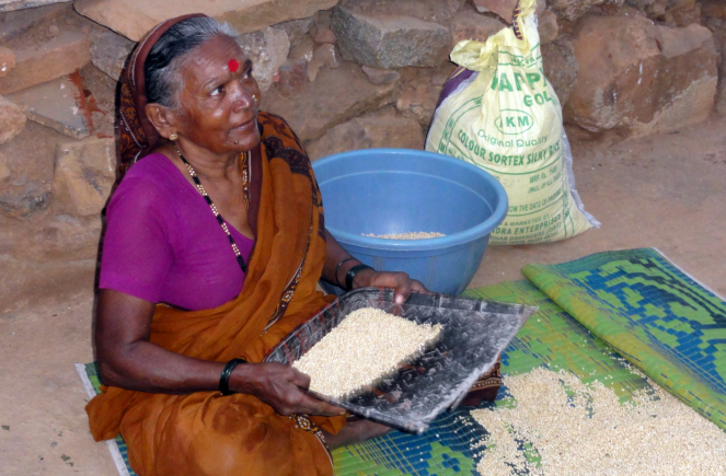 A woman sifting jowar in Hubli
