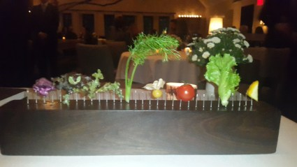 Freshness redefined as vegetables preen on the fence & my Blue Hill Farm dinner begins chef Dan Barber astonishes