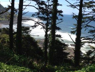 Surf from Cape Perpetua