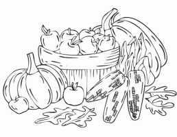 Ausmalbilder Kostenlos Herbstmotive   Kinder Ausmalbilder