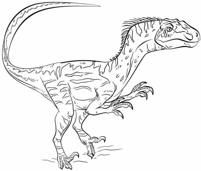 Jurassic World Coloring Pages  25 images Free Printable