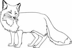 Ausmalbilder Fuchs. Kostenlos drucken. Für Mädchen und Jungen