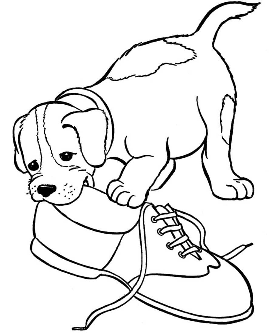 Malvorlagen Hundewelpen Kostenlos