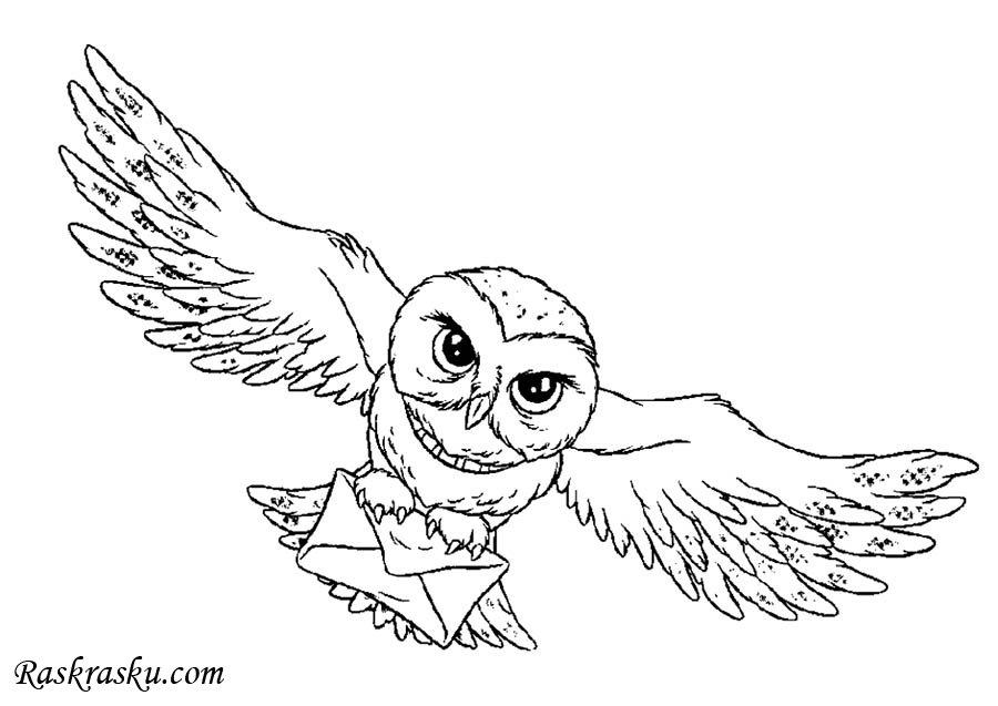 Раскраски Гарри Поттер скачать и распечатать бесплатно