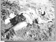 101-_torture_3a_29_octobre_1956_ouvriers_musulmans-59ce7