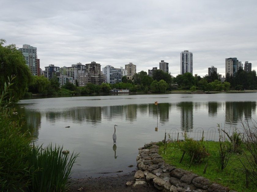 vancouver stanley park lost lagoon (1)