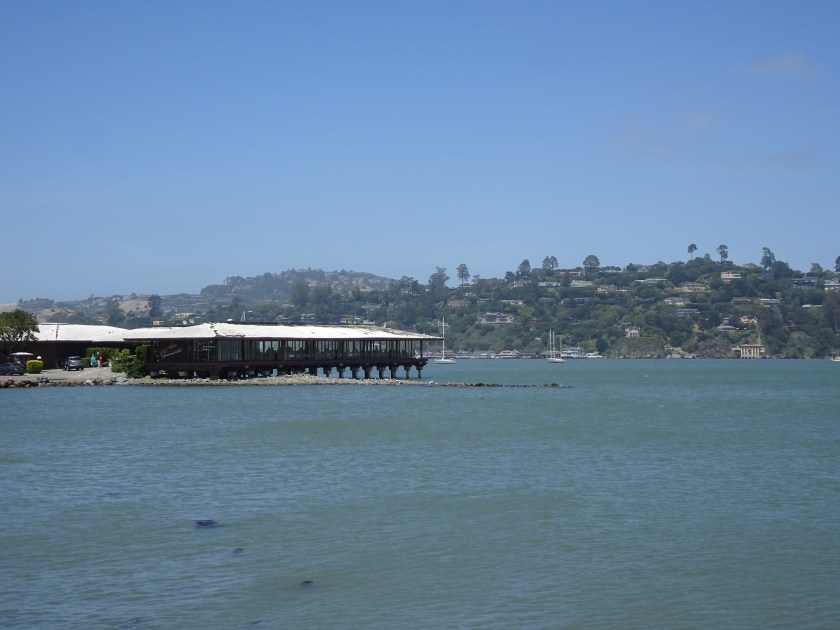 sausalito dowtown puerto california(37)