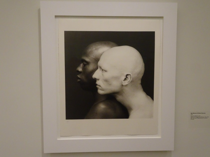 new york 2019 gugghenheim mapplethorpe
