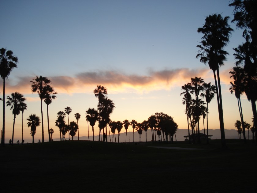 california venice usa atardecer (8)