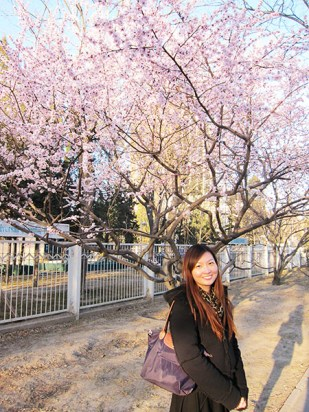 My first encounter with Plum Blossoms!