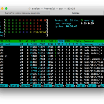 HypriotOS htop-3-webserver-haproxy