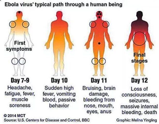 ebola_path.rastafari.tv