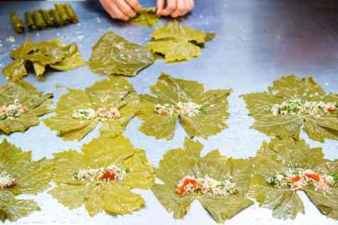 Grape leaves look a lot like maple leaves. Everyone expresses gratitude that they are able to share their traditions with their new Canadian community.| Rebecca Lippiatt