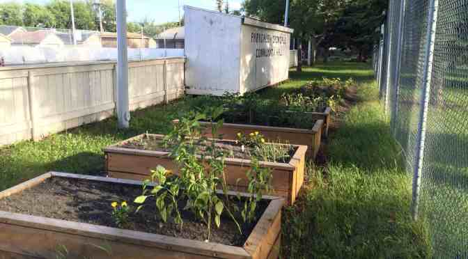 "<span class=""entry-title-primary"">Growth is in the future for community gardens</span> <span class=""entry-subtitle"">Expansion of current community gardens is needed</span>"