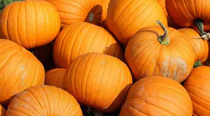 "<span class=""entry-title-primary"">'Tis the season for all things pumpkin</span> <span class=""entry-subtitle"">Use the seeds or puree for all kinds of recipes </span>"