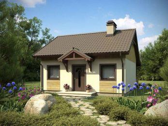 Proiect-de-casa-mica-Parter-60011