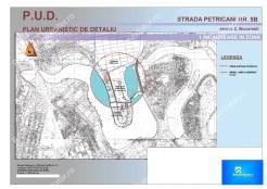 RateLaDezvoltator.ro_EXCLUSIVITATE_Teren_Petricani_1650mp_01 zona