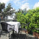 Ciampini Cafe du Jardin Outdoor Area
