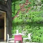 Caponata plant wall