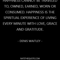 Happiness cannot be traveled to, owned, earned, worn or consumed. Happiness is the spiritual experience of living every minute with love, grace and gratitude. - Denis Waitley -