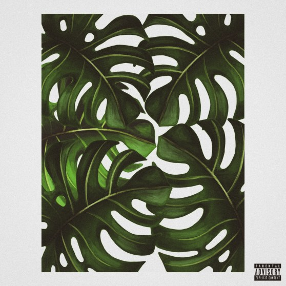 jungle (1)