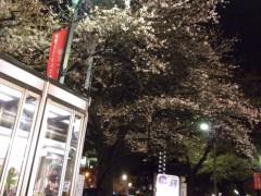 駅前の桜、今夜はこんな感じ