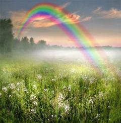 beautiful-rainbow