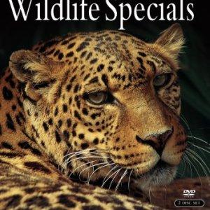 David-Attenborough-Wildlife-Specials-0