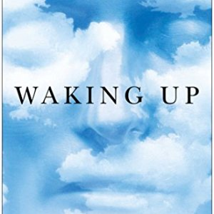 Waking-Up-A-Guide-to-Spirituality-Without-Religion-0-1