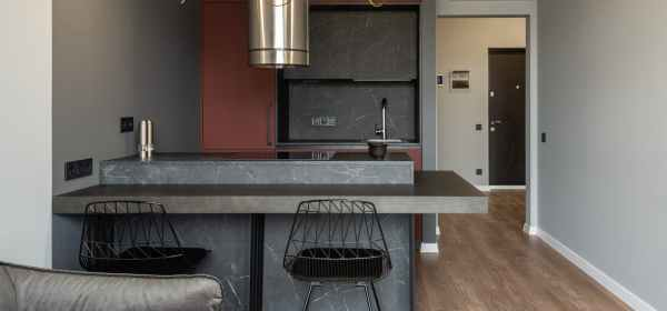 contemporary apartment with open space kitchen